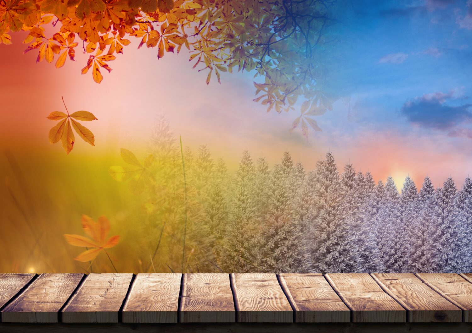 Digital composition of autumn and winter season with wooden walkway
