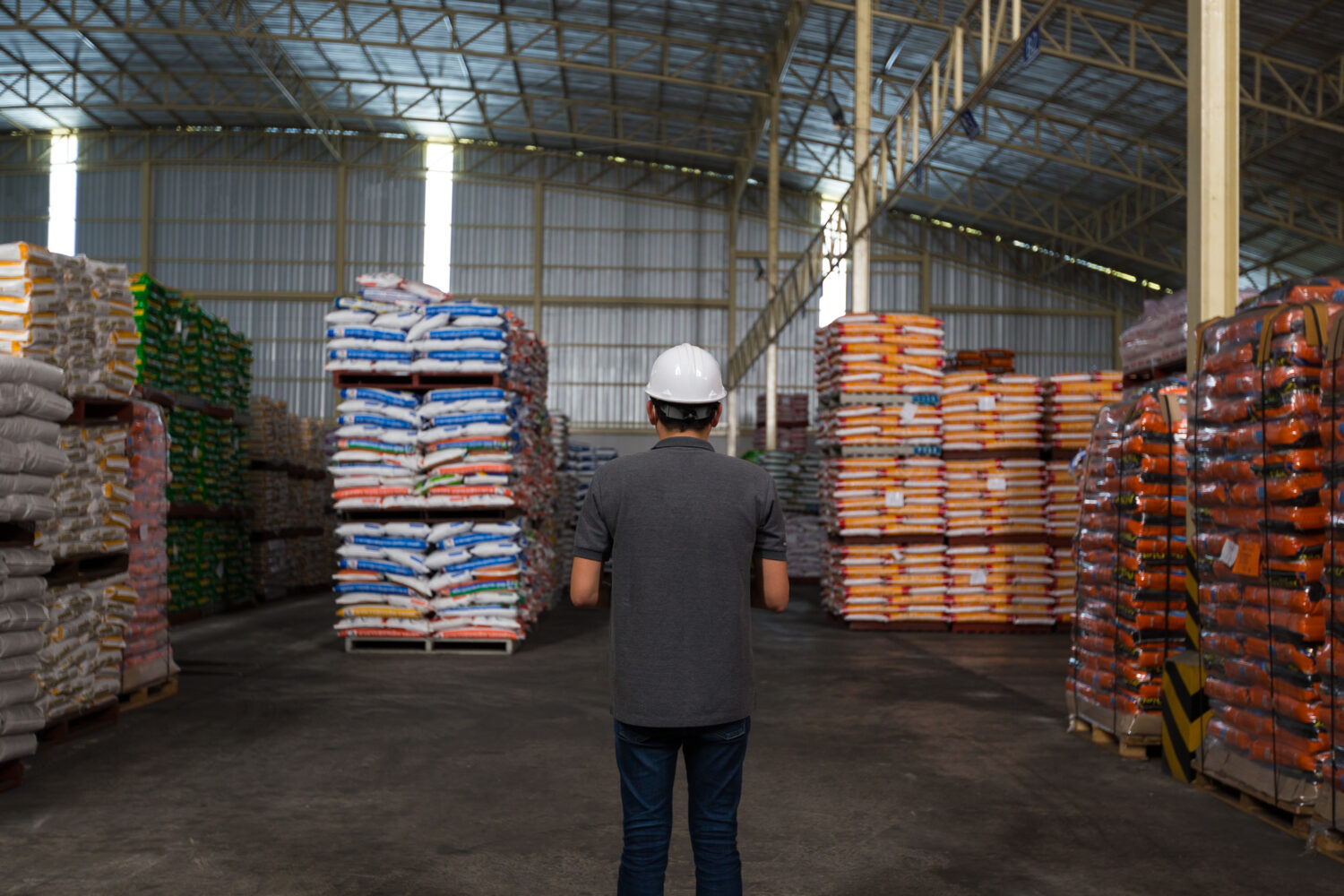 Warehouse worker looking at stock