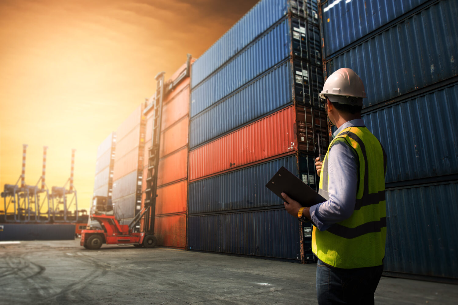 Logistics management software – the key in solving supply chain issues